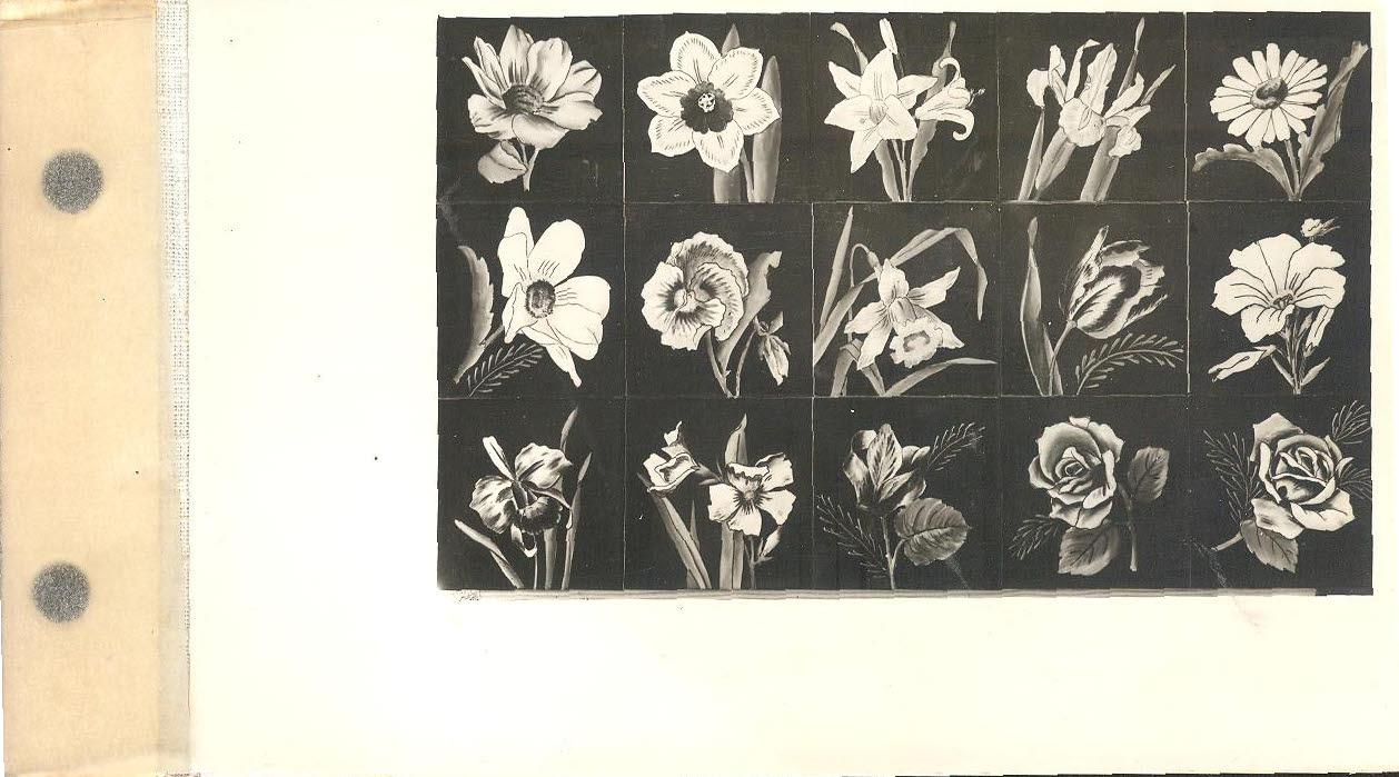 Fotografias do cat logo dos azulejos da f brica aleluia for Fabrica de azulejos