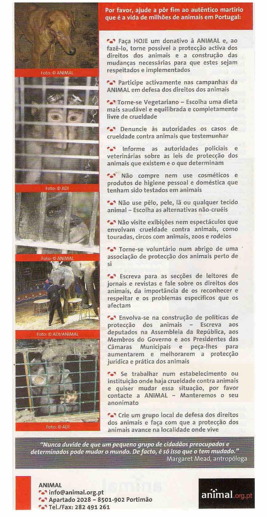 panfleto associação animal (2)