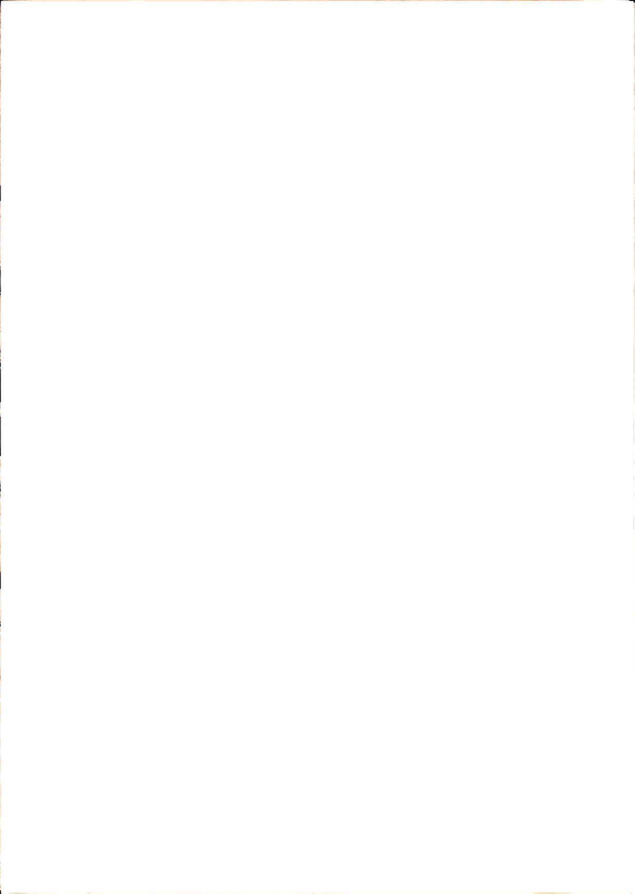 Copy 4 of Viva_a_Revolucao