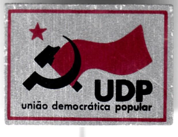 UDP_pin_f_001